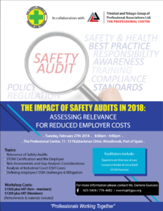 THE IMPACT OF SAFETY AUDITS IN 2018